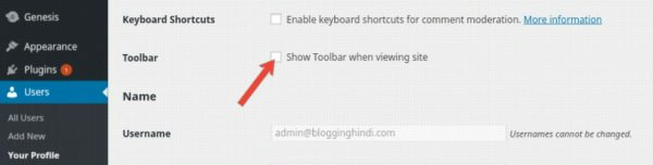 WordPress Toolbar/Adminbar Ko Hide Aur Customize Kaise Kare 2