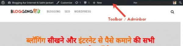 WordPress Toolbar/Adminbar Ko Hide Aur Customize Kaise Kare 1