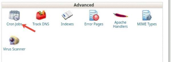 Bina Plugin Ke Automatically WordPress Backup Setup Kaise Kare 8