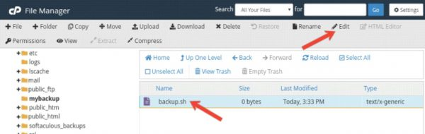 Bina Plugin Ke Automatically WordPress Backup Setup Kaise Kare 6