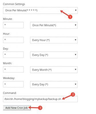 Bina Plugin Ke Automatically WordPress Backup Setup Kaise Kare 9