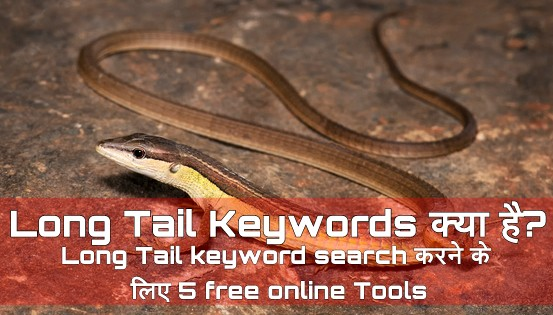 Long tail keywords kya hota hai.. Long tail keywords search karne ke liye 5 Free Online tools 5 free tools for search Long Tail Keywords what is